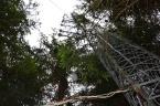 Eddy kovarianční věž pro měření toků látek a energie