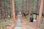 Sběrné nádoby pro měření opadu jehlic a podkorunových srážek