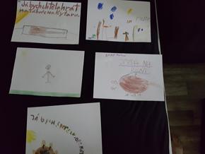 Studentské projekty na FSS OU