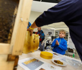 Včelín z Botanické zahrady PřF OU