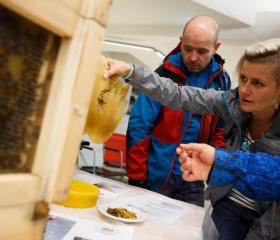 Děláme i vlastní med