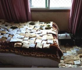 """Každodenní sušení posbíraného materiálu nás vždy na nějaký čas """"vytlačilo"""" z hotelového pokoje."""