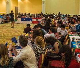 IFMSA March Meeting 2018 Egypt