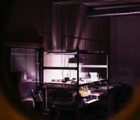 Ostravská Noc vědců 2018