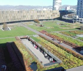 Regenerace bývalé průmyslové plochy v areálu Voest<br>Autor: Jana Křepelová