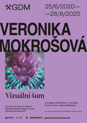 Veronika Mokrošová: Vizuální šum
