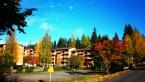 Neulamäki - zde jsme bydlely, podzim