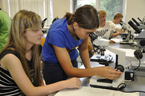 Přírodní vědy na tradiční letní prázdninové škole opět bodovaly (52/164)