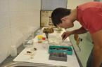 Přírodní vědy na tradiční letní prázdninové škole opět bodovaly (53/164)