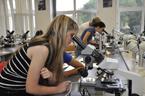 Přírodní vědy na tradiční letní prázdninové škole opět bodovaly (54/164)