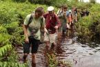 Rašelinné lesy jsou obtížně přístupné