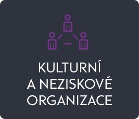 Kulturní a neziskové organizace