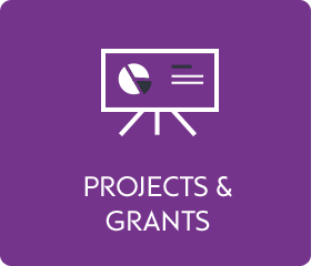 Projects and grants