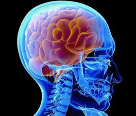 Department ofCraniofacial Surgery