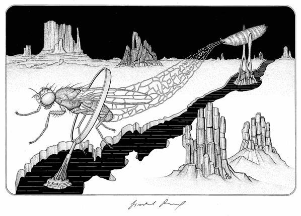 kresba J. Roháčka