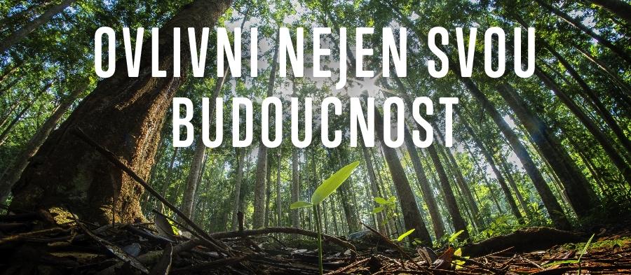 Ostravská univerzita: Zakaždou přihlášku zasadíme strom